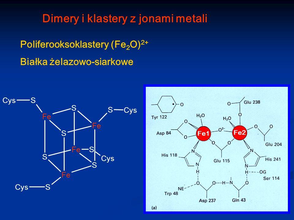 Dimery i klastery z jonami metali