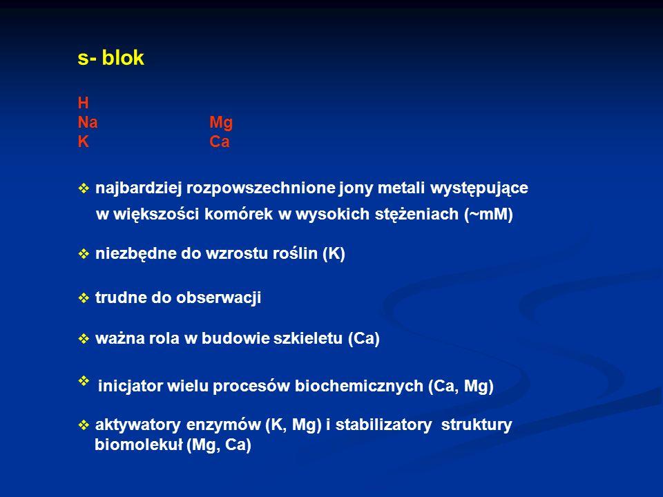 s - blok H Na Mg K Ca w większości komórek w wysokich stężeniach (~mM)