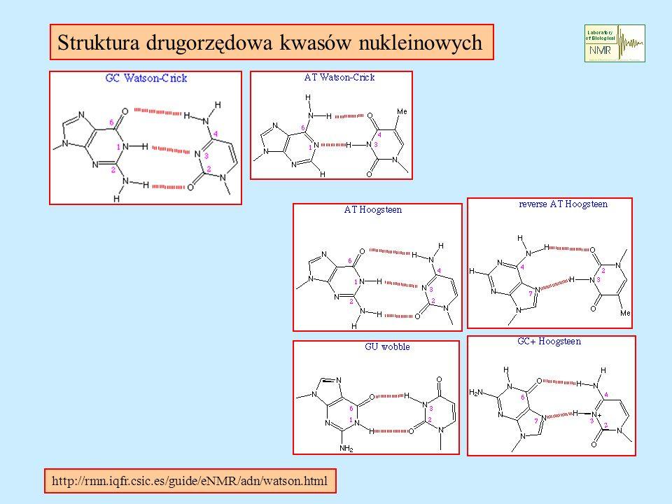 Struktura drugorzędowa kwasów nukleinowych