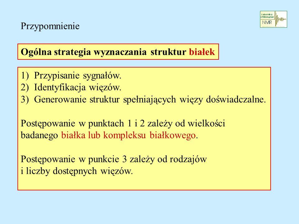 Przypomnienie Ogólna strategia wyznaczania struktur białek. 1) Przypisanie sygnałów. 2) Identyfikacja więzów.