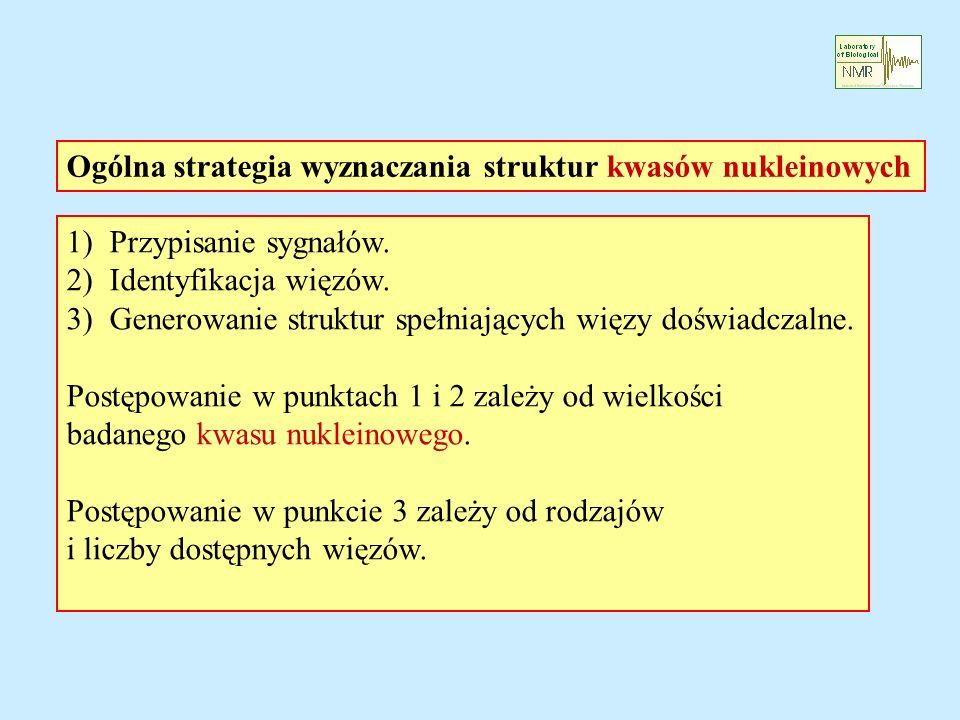 Ogólna strategia wyznaczania struktur kwasów nukleinowych