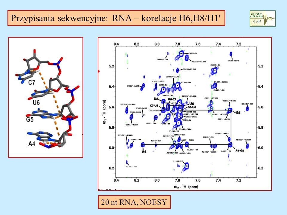 Przypisania sekwencyjne: RNA – korelacje H6,H8/H1