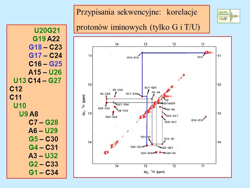 Przypisania sekwencyjne: korelacje protonów iminowych (tylko G i T/U)