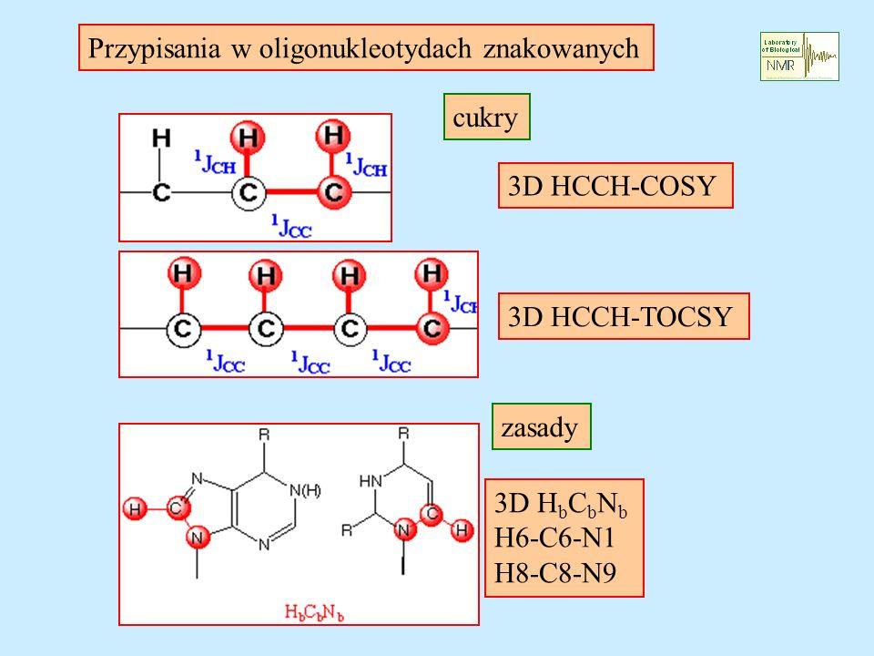 Przypisania w oligonukleotydach znakowanych