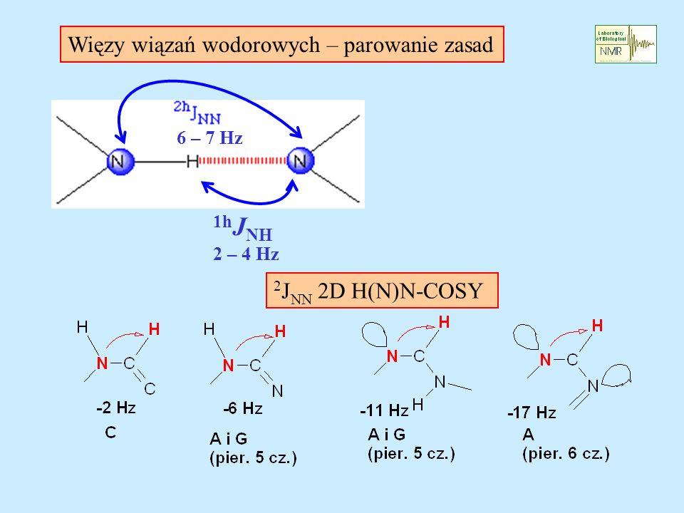1hJNH Więzy wiązań wodorowych – parowanie zasad 2JNN 2D H(N)N-COSY