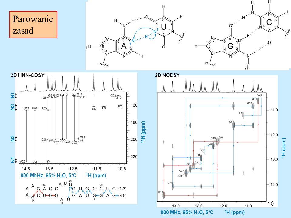 Parowanie zasad 10 2D HNN-COSY 2D NOESY N1 N3 15N (ppm) N3 1H (ppm) N1