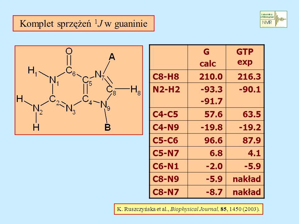 Komplet sprzężeń 1J w guaninie
