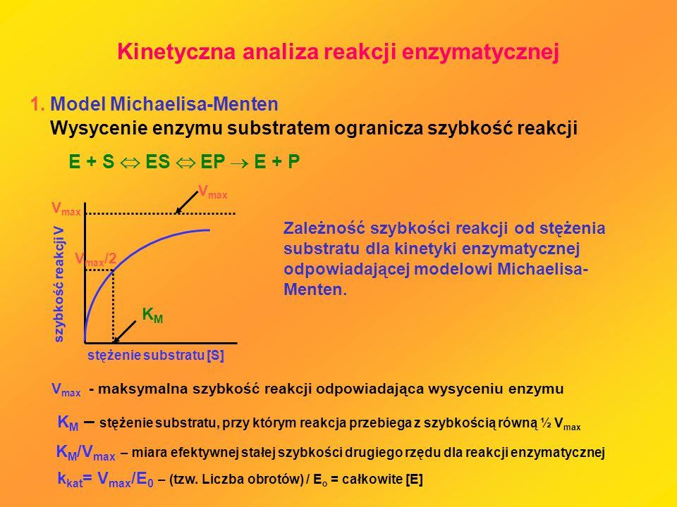 Kinetyczna analiza reakcji enzymatycznej
