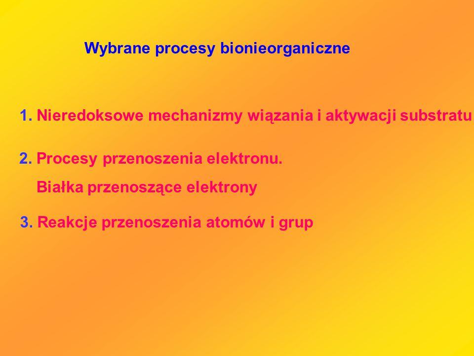 Wybrane procesy bionieorganiczne