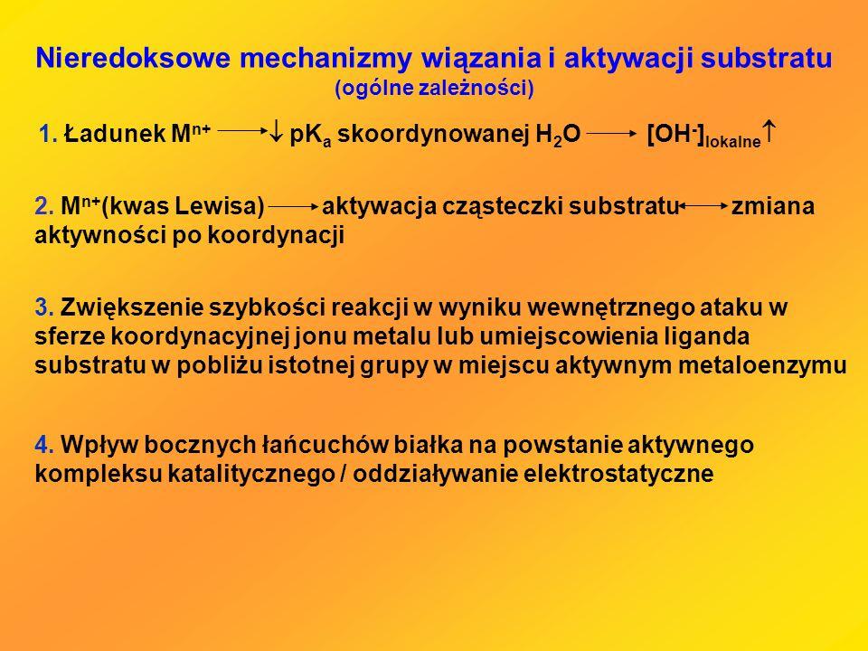 Nieredoksowe mechanizmy wiązania i aktywacji substratu (ogólne zależności)