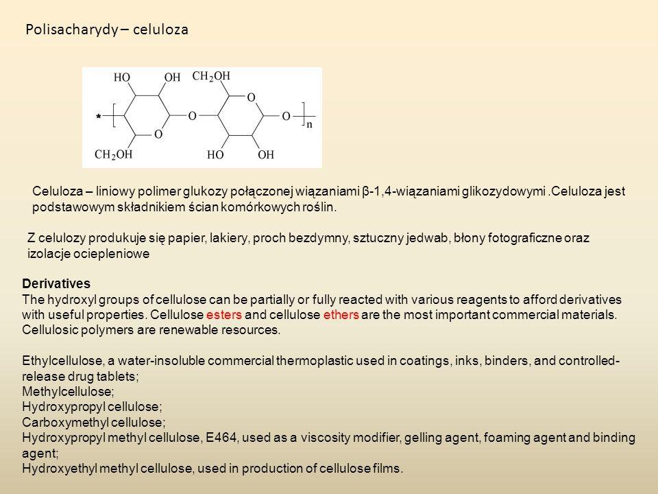 Polisacharydy – celuloza