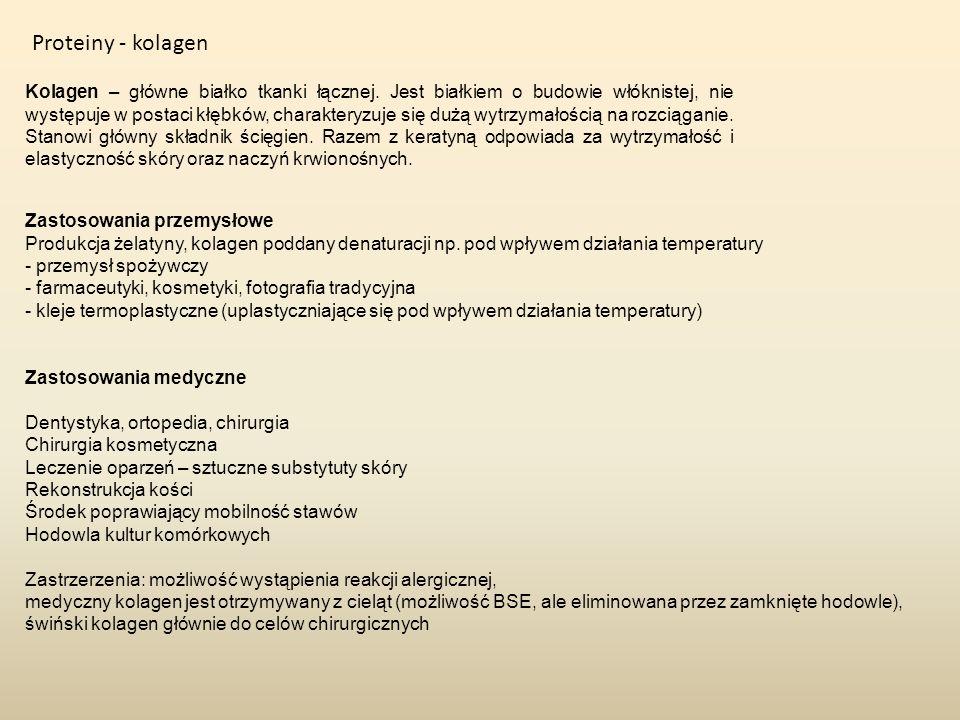Proteiny - kolagen