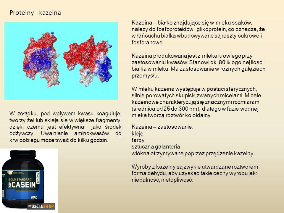 Proteiny - kazeina