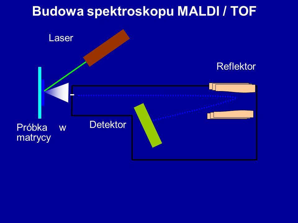Budowa spektroskopu MALDI / TOF