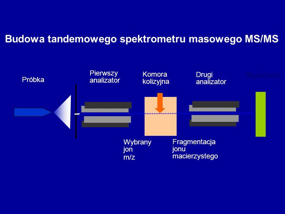 Budowa tandemowego spektrometru masowego MS/MS