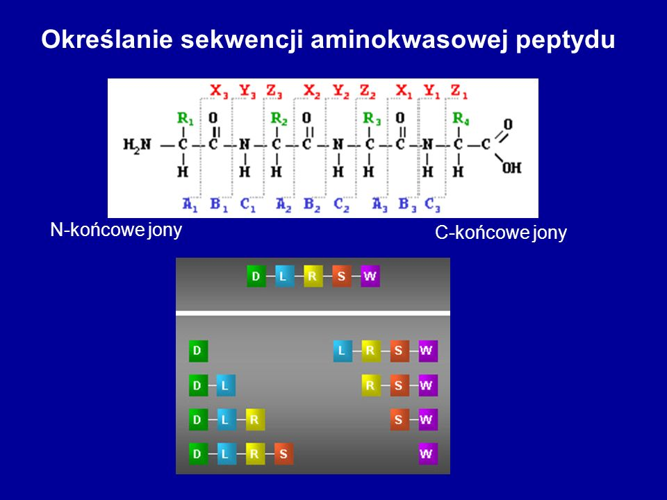 Określanie sekwencji aminokwasowej peptydu