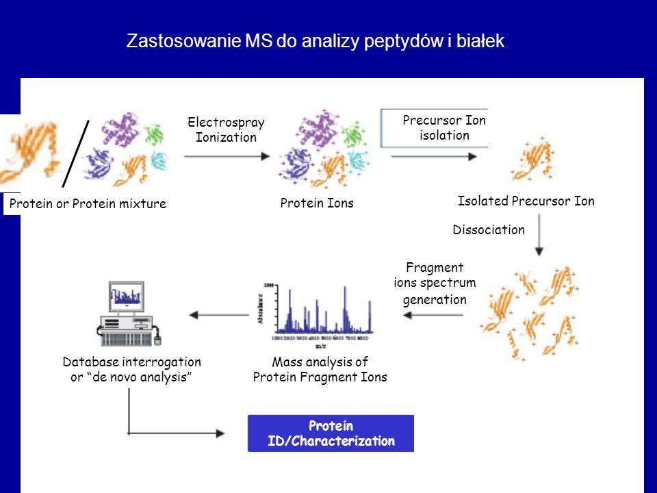 Protein ID/Characterization