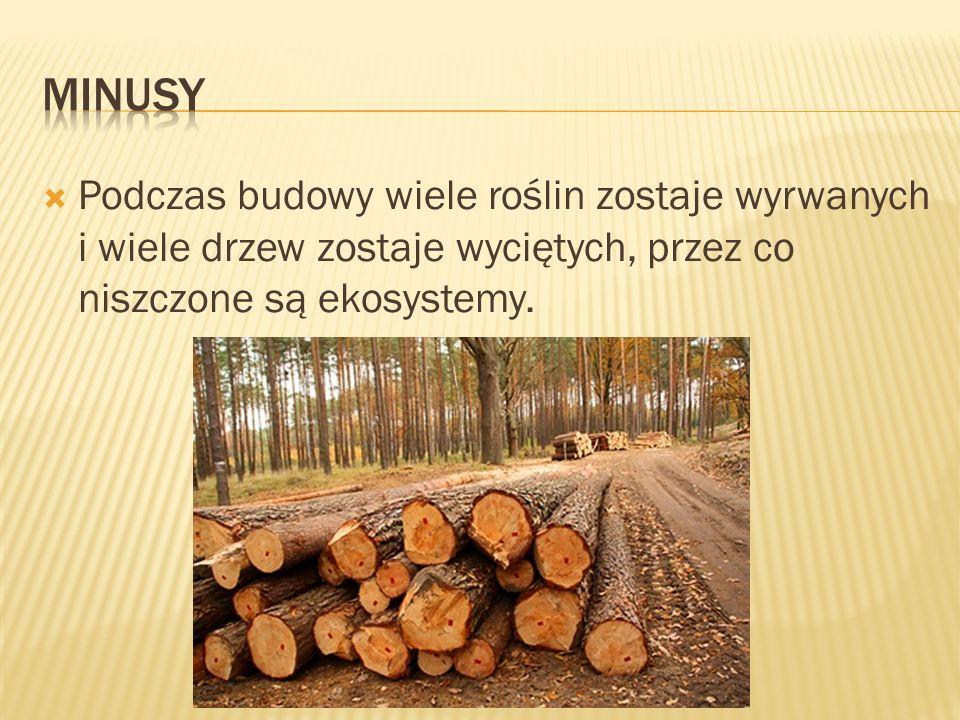 minusy Podczas budowy wiele roślin zostaje wyrwanych i wiele drzew zostaje wyciętych, przez co niszczone są ekosystemy.