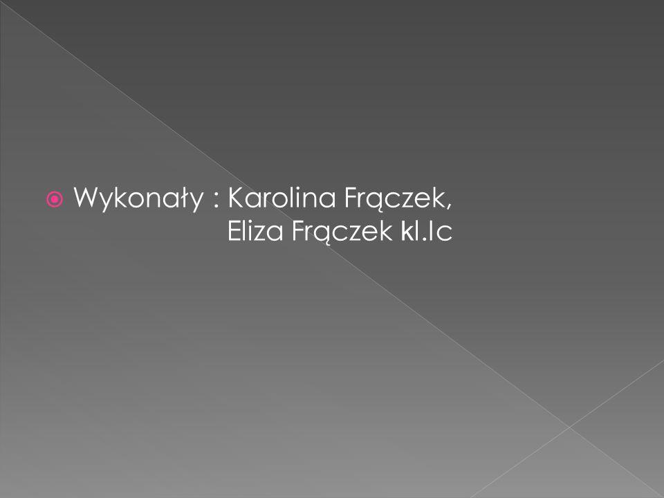 Wykonały : Karolina Frączek, Eliza Frączek kl.Ic