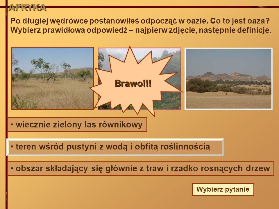 AFRYKA Brawo!!! wiecznie zielony las równikowy