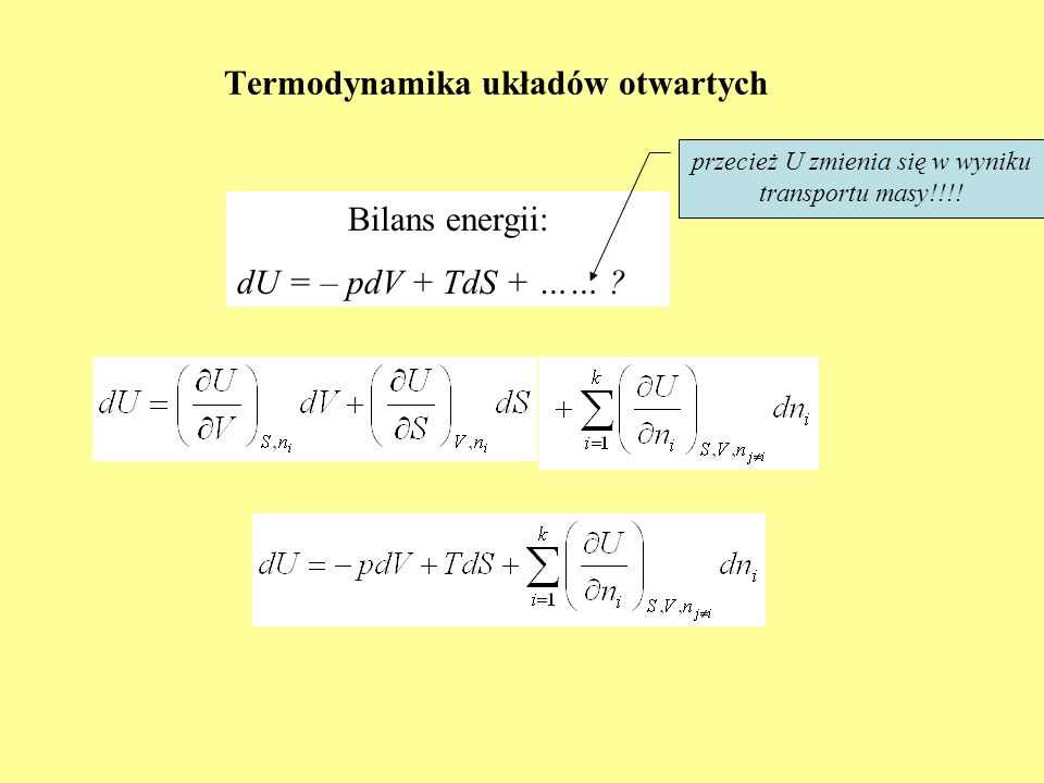 Termodynamika układów otwartych