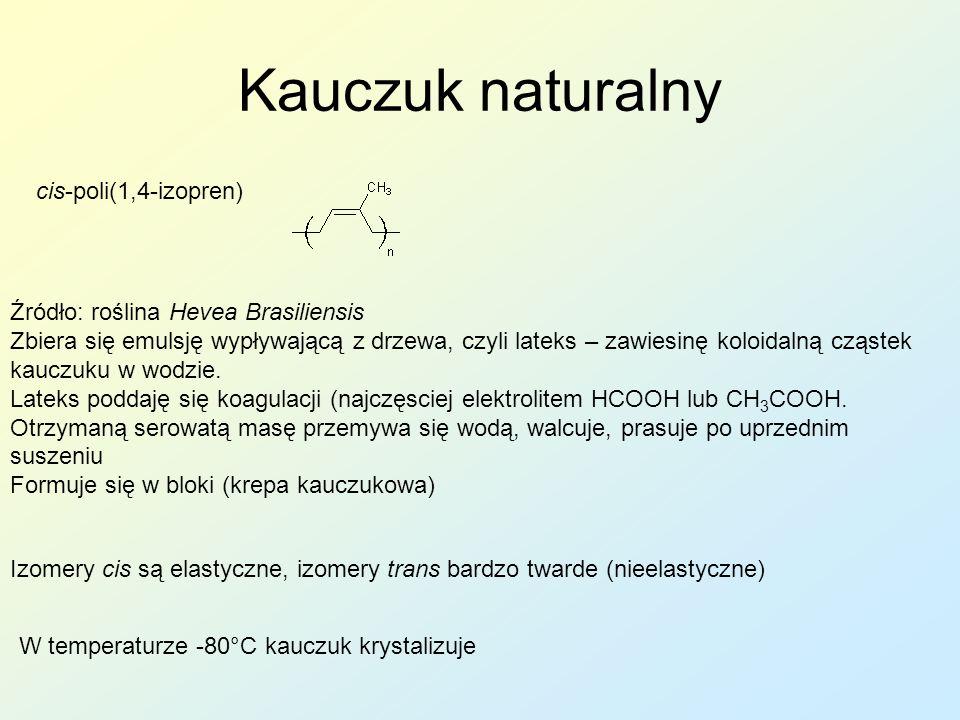 Kauczuk naturalny cis-poli(1,4-izopren)
