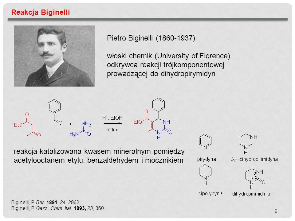 włoski chemik (University of Florence)