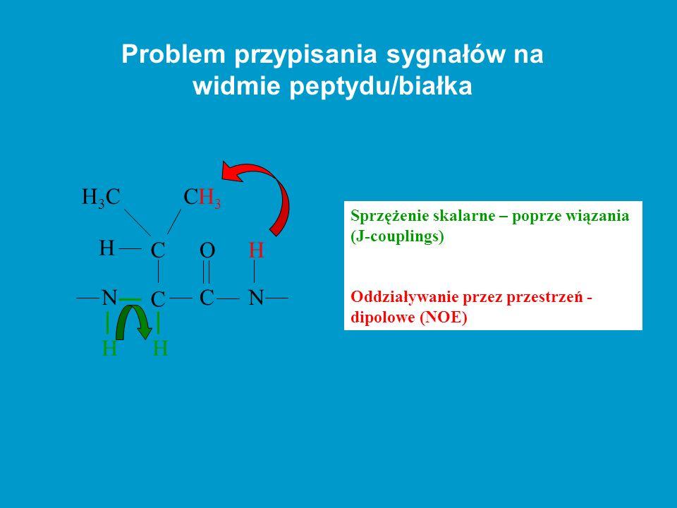 Problem przypisania sygnałów na widmie peptydu/białka