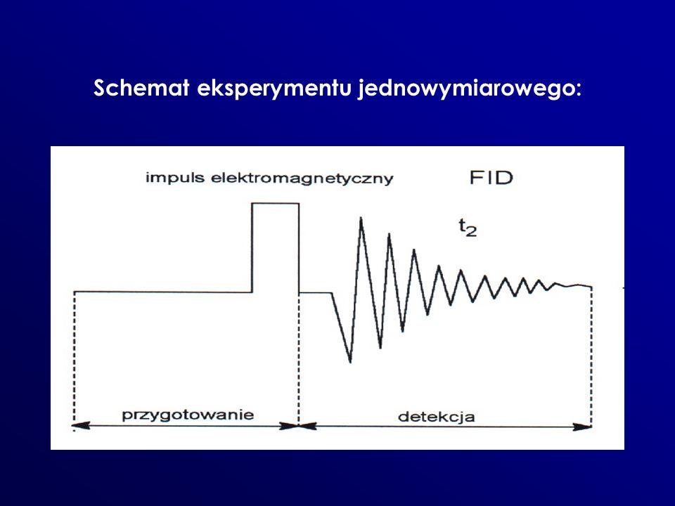 Schemat eksperymentu jednowymiarowego: