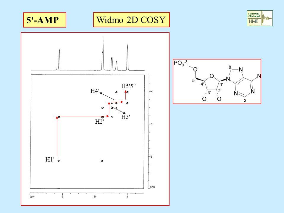 5 -AMP Widmo 2D COSY H5 5 H4 H3 H2 H1