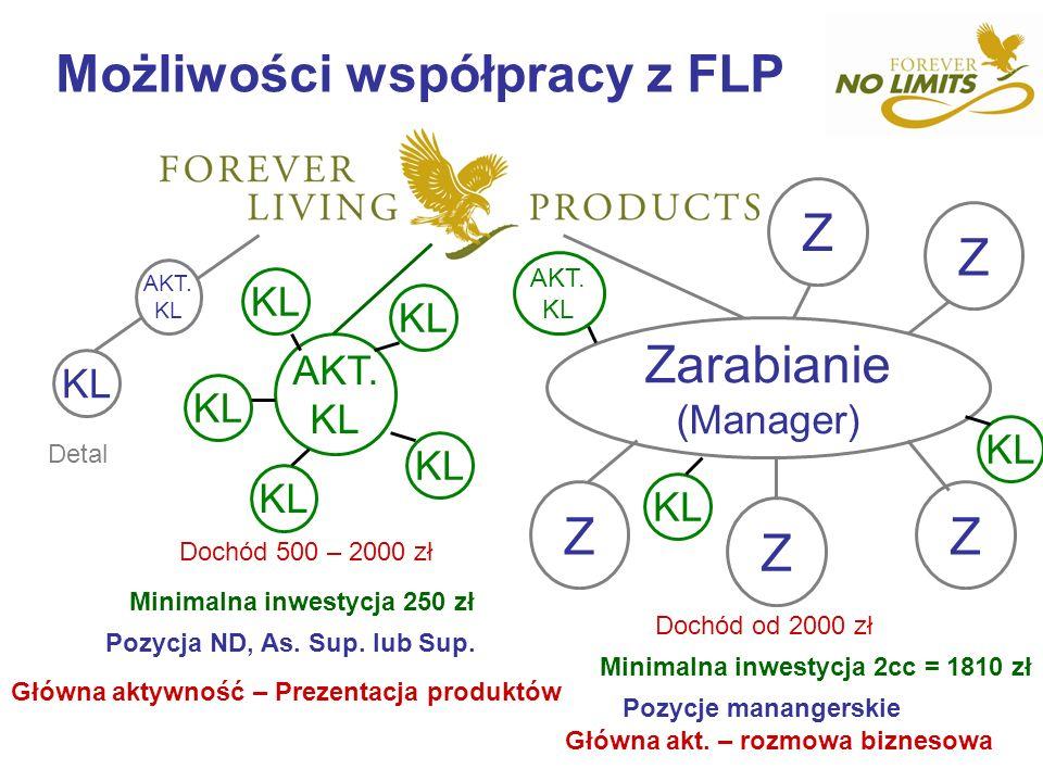 Możliwości współpracy z FLP