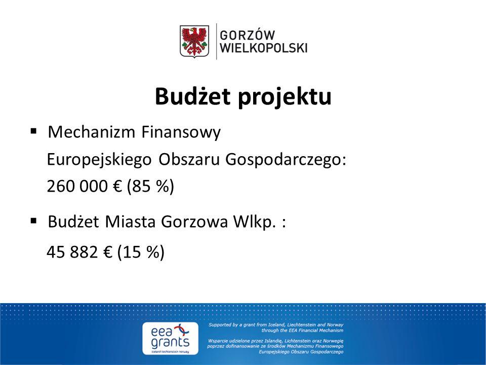 Budżet projektu Mechanizm Finansowy