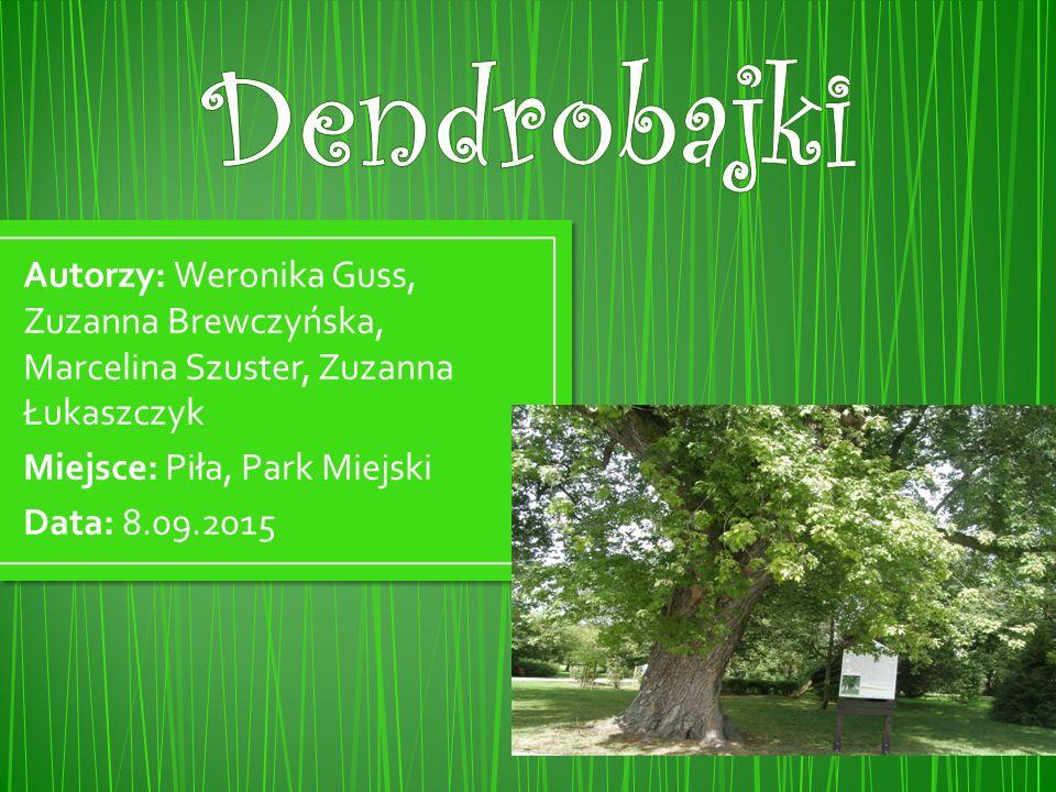 Dendrobajki Autorzy: Weronika Guss, Zuzanna Brewczyńska, Marcelina Szuster, Zuzanna Łukaszczyk. Miejsce: Piła, Park Miejski.