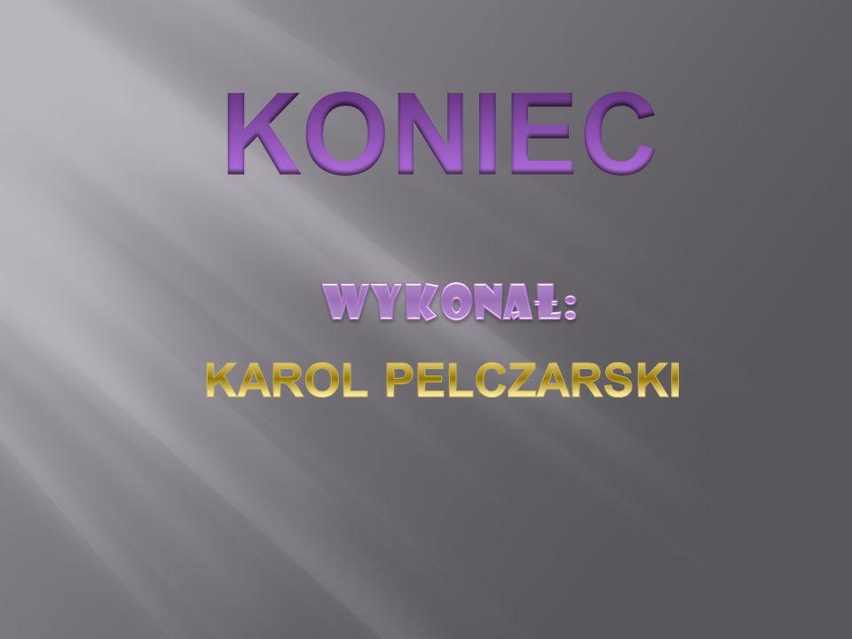 KONIEC Wykonał: KAROL PELCZARSKI