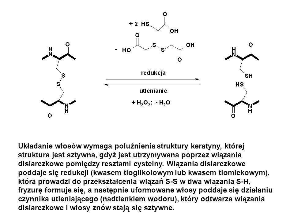 Układanie włosów wymaga poluźnienia struktury keratyny, której struktura jest sztywna, gdyż jest utrzymywana poprzez wiązania disiarczkowe pomiędzy resztami cysteiny.