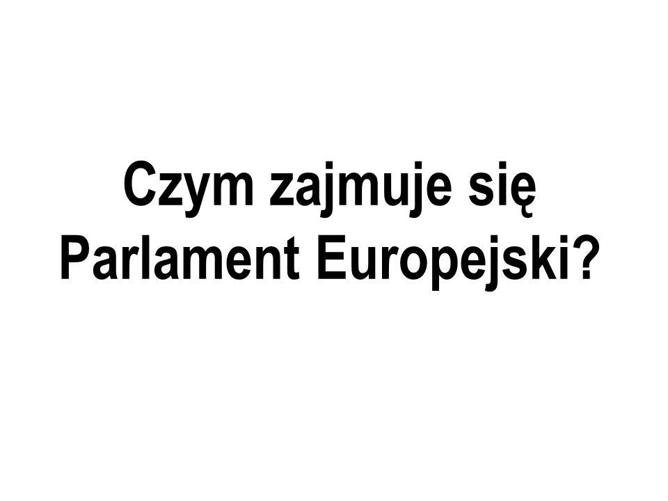 Czym zajmuje się Parlament Europejski