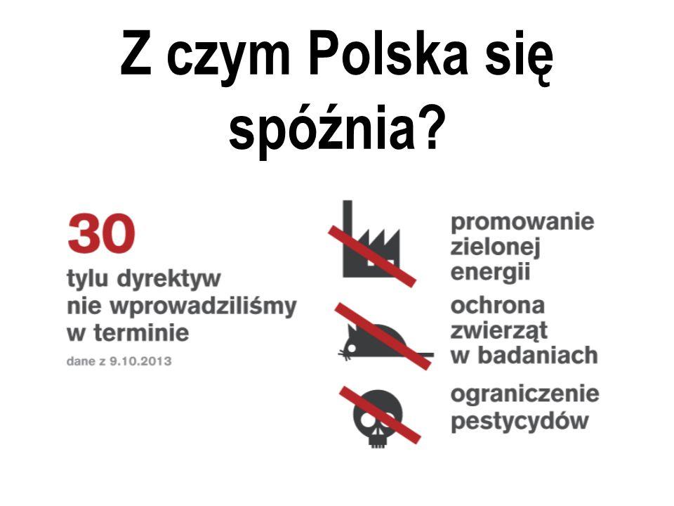 Z czym Polska się spóźnia