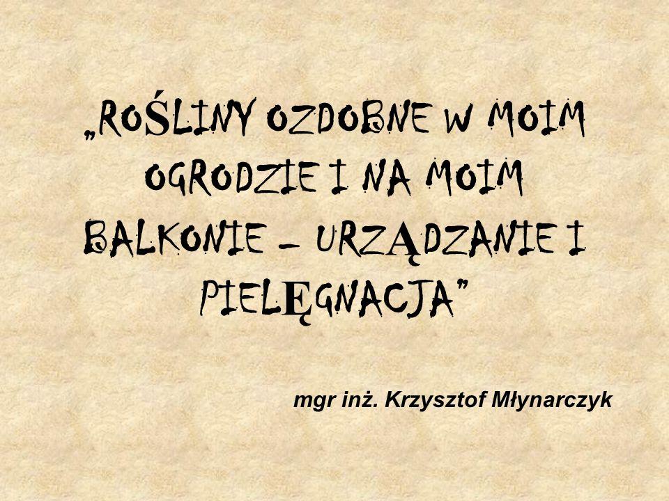 mgr inż. Krzysztof Młynarczyk