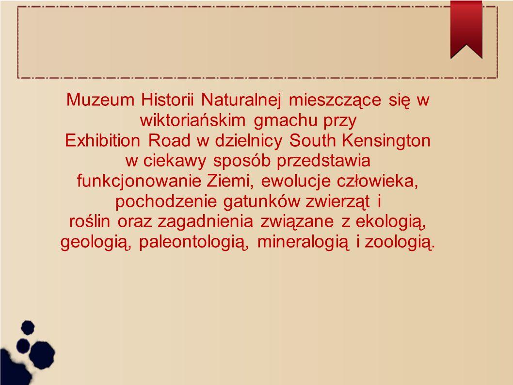Muzeum Historii Naturalnej mieszczące się w wiktoriańskim gmachu przy