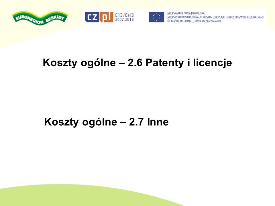 Koszty ogólne – 2.6 Patenty i licencje