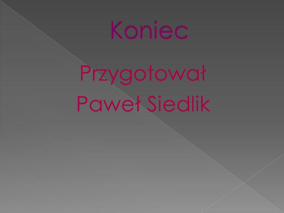 Przygotował Paweł Siedlik