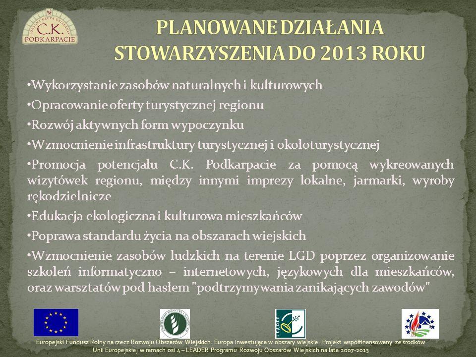 PLANOWANE DZIAŁANIA STOWARZYSZENIA DO 2013 ROKU