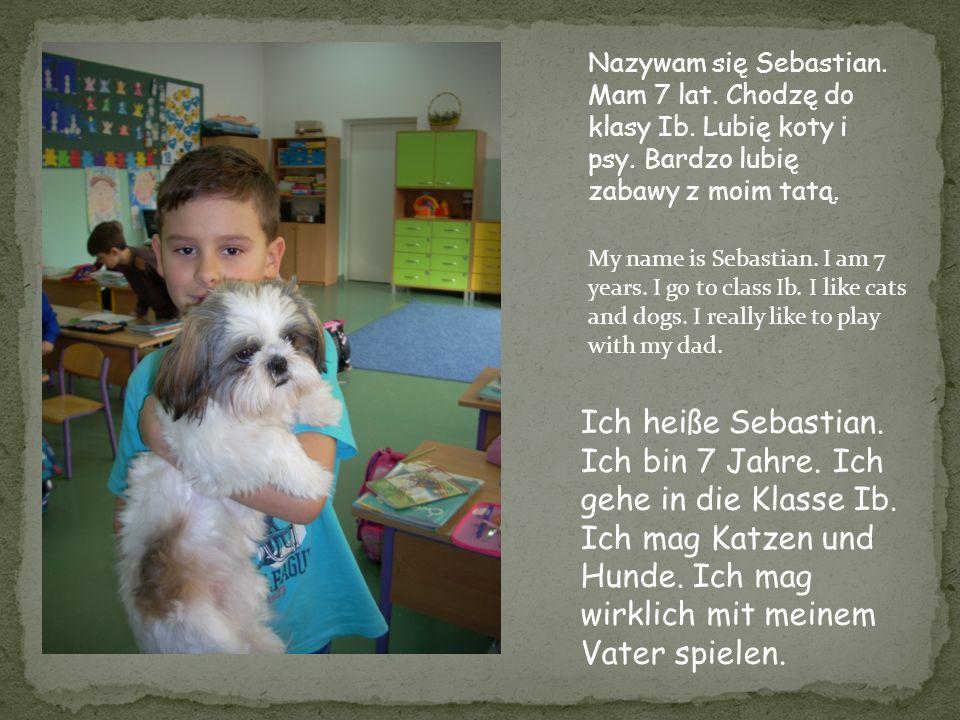 Nazywam się Sebastian. Mam 7 lat. Chodzę do klasy Ib. Lubię koty i psy
