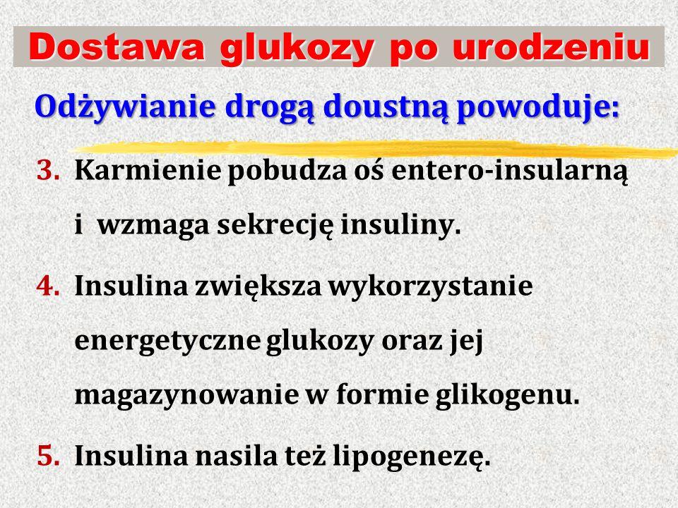 Dostawa glukozy po urodzeniu