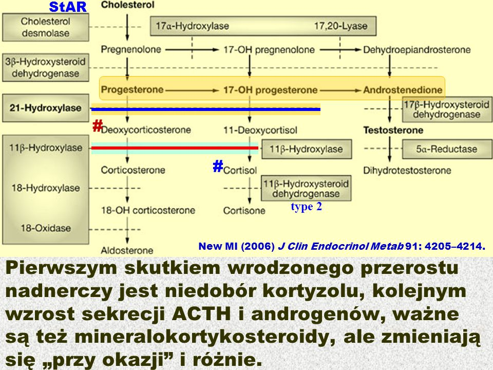 StAR # # type 2. New MI (2006) J Clin Endocrinol Metab 91: 4205–4214.