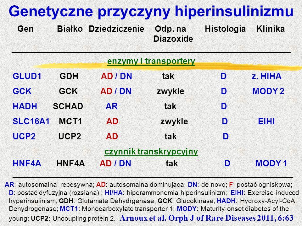 Genetyczne przyczyny hiperinsulinizmu