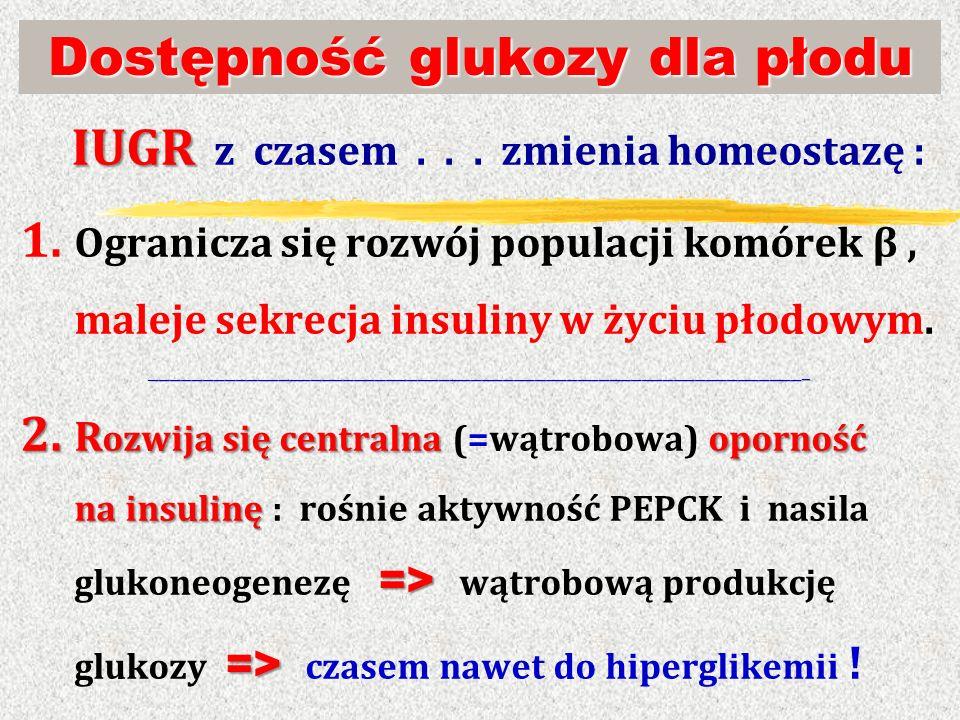Dostępność glukozy dla płodu