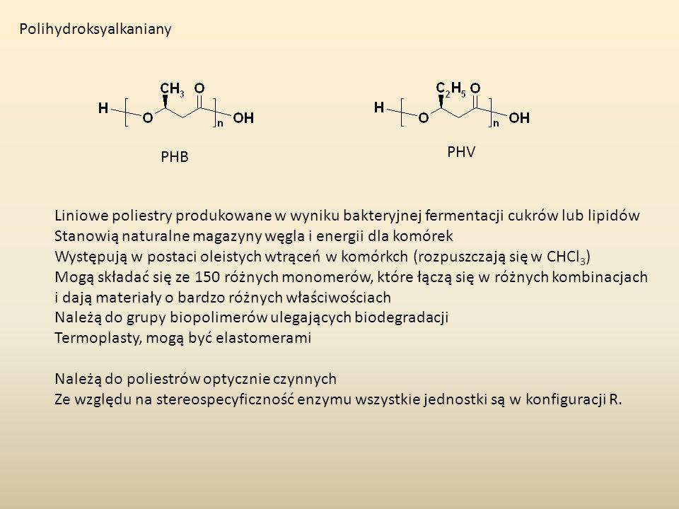 Polihydroksyalkaniany