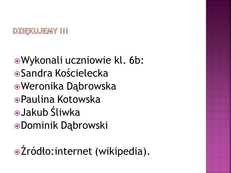 Wykonali uczniowie kl. 6b: Sandra Kościelecka Weronika Dąbrowska