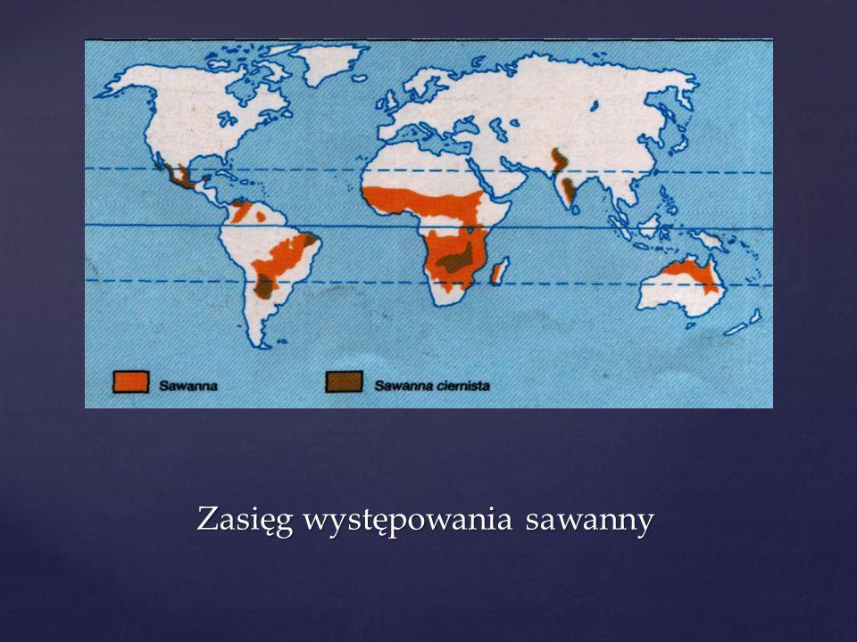 Zasięg występowania sawanny